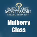 Group logo of Mulberry Class